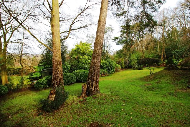 Garden of Platt Common, St Mary's Platt TN15