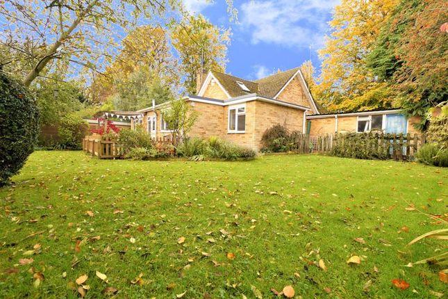 Thumbnail Detached bungalow for sale in Burcot, Abingdon