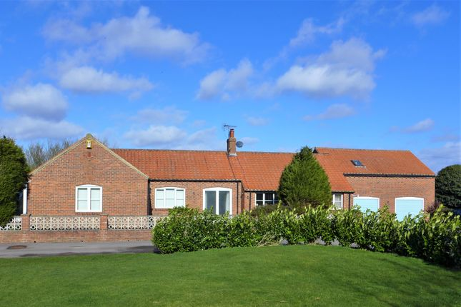 Thumbnail Detached bungalow to rent in Boroughbridge, York