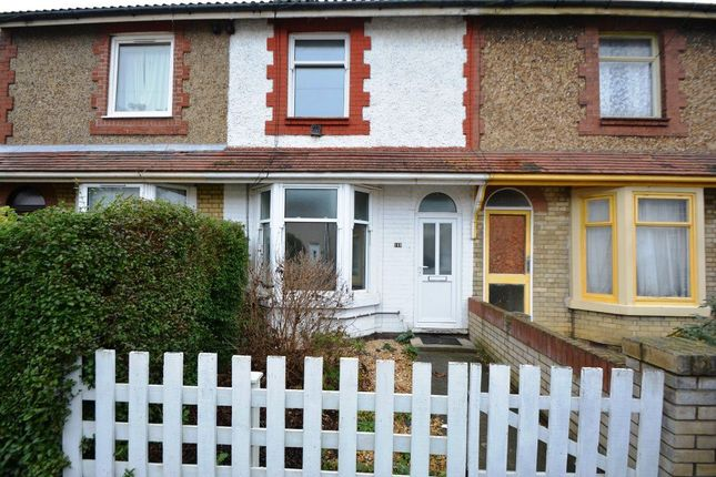 Thumbnail Property to rent in Mountsteven Avenue, Walton, Peterborough
