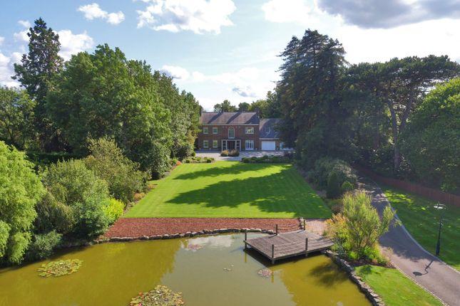 Thumbnail Detached house for sale in Ashmore Lane, Keston