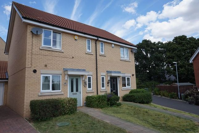 Thumbnail Semi-detached house for sale in Masters Crescent, Basildon