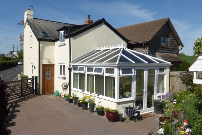 Thumbnail Cottage for sale in Moss Cottage, Thruxton, Hereford
