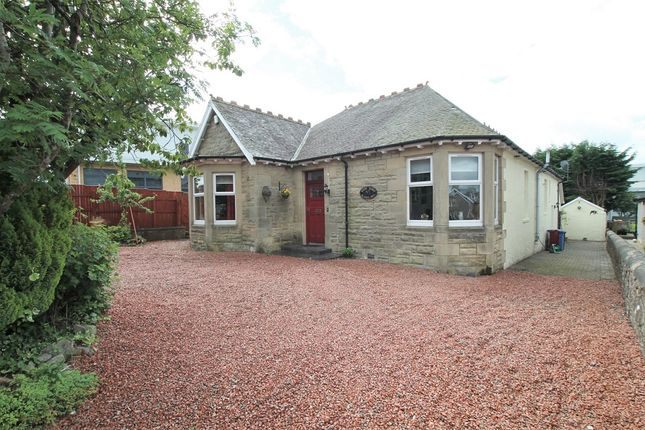 Thumbnail Detached house for sale in Albany Drive, Lanark