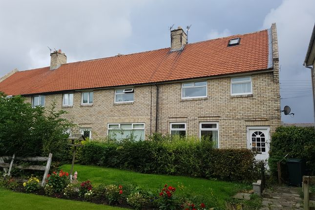 Thumbnail Terraced house to rent in Broom Green, Whickham