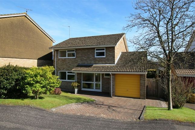 Thumbnail Detached house for sale in Lordsfield Gardens, Overton, Basingstoke
