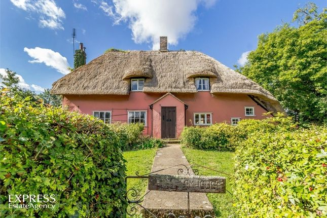 Thumbnail Detached house for sale in Fen Street, Buxhall, Stowmarket, Suffolk