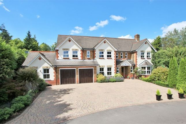 Thumbnail Detached house to rent in Erica Drive, Wokingham, Berkshire