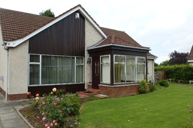 Thumbnail Bungalow to rent in Kings Park, Longniddry, East Lothian