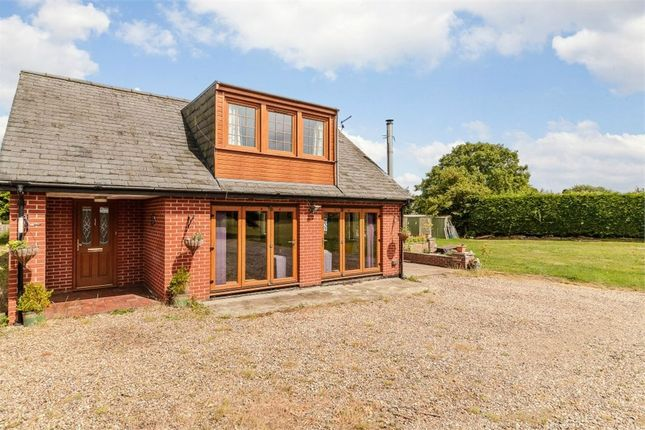 Thumbnail Detached house for sale in Hadleigh Heath, Hadleigh, Ipswich, Suffolk