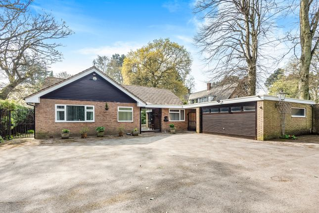 Thumbnail Detached bungalow for sale in Birch Hollow, Edgbaston, Birmingham