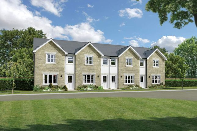 "Thumbnail Terraced house for sale in ""Argyll"" at Cherrytree Gardens, Bishopton"