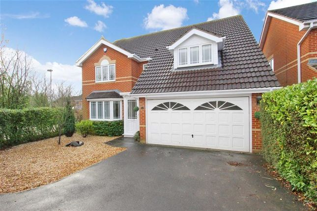 Thumbnail Detached house to rent in Baxter Close, Swindon, Wiltshire