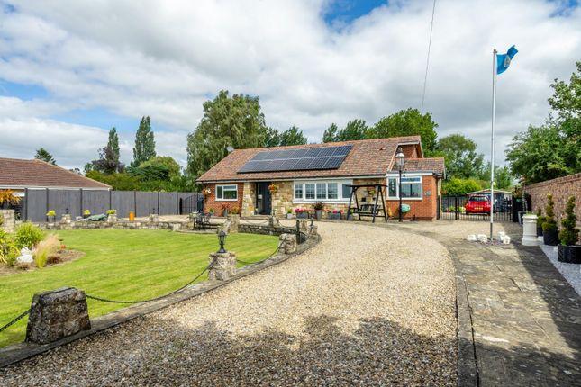 Thumbnail Detached bungalow for sale in Temple Lane, Copmanthorpe, York
