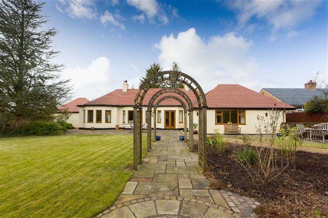 Thumbnail Detached bungalow for sale in Woodplumpton Lane, Broughton, Preston