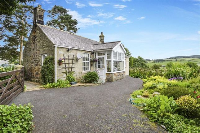 Thumbnail Detached house for sale in Snitter, Rothbury, Northumberland