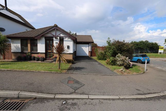 Thumbnail Bungalow to rent in Meadowside, Newquay