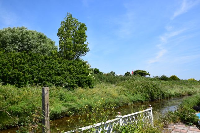 Stream And View of Coast Road, Pevensey Bay BN24