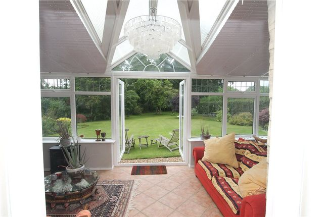 Conservatory of Bowridge Hill, Gillingham, Dorset SP8