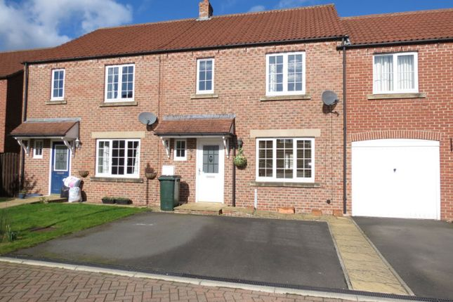 Thumbnail Terraced house to rent in Aspen Close, Pickering