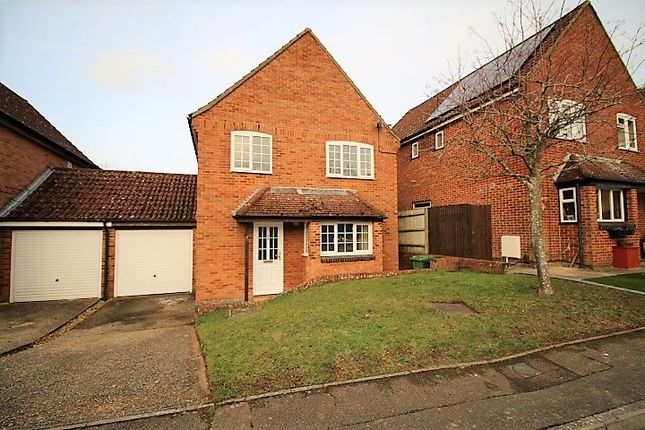 Thumbnail Link-detached house to rent in Hampshire Close, Basingstoke