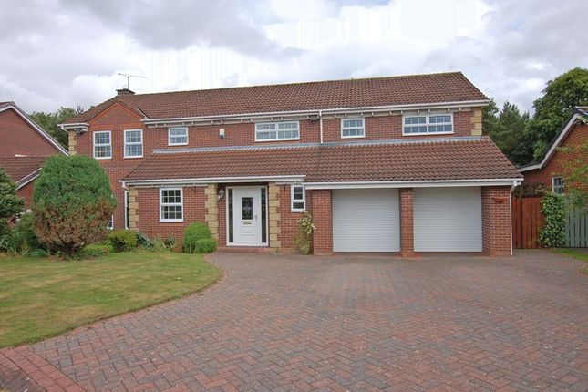 Detached house to rent in Carr Field, Ponteland, Newcastle Upon Tyne