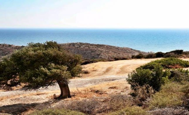 Thumbnail Land for sale in Pissouri, Cyprus