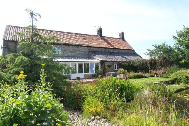 Thumbnail Cottage for sale in Longhoughton, South End, Lilac Cottage