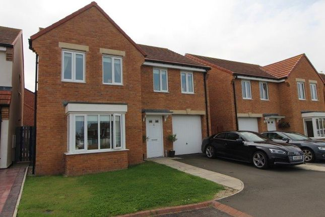Thumbnail Detached house to rent in Hedgehope Walk, Blyth