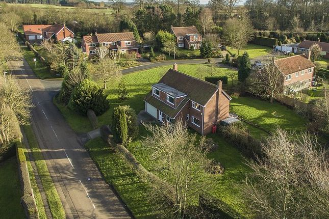 Thumbnail Detached house for sale in Chequers Close, Ranby, Retford