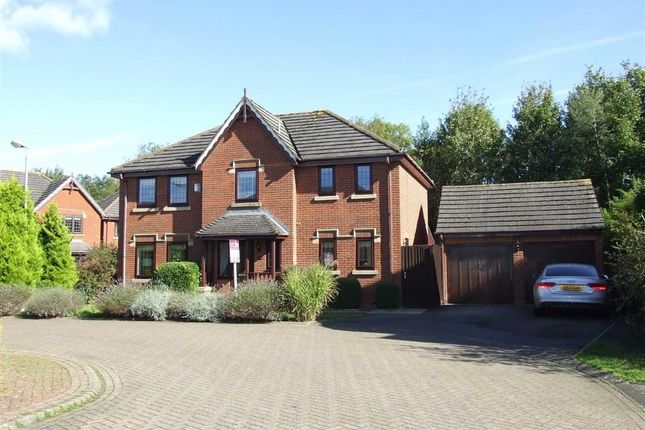 Thumbnail Detached house for sale in Speedwell Close, Melksham