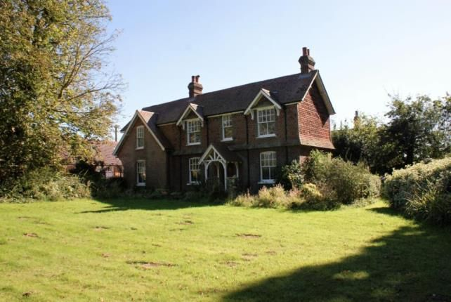 Thumbnail Equestrian property for sale in Rudgwick, Horsham, West Sussex