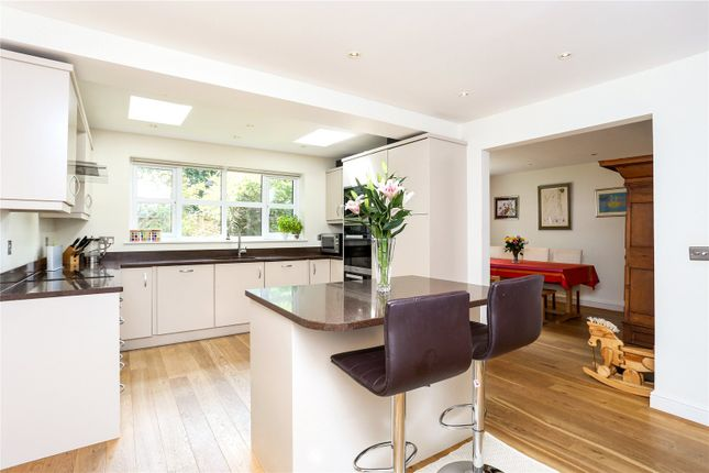 Thumbnail Detached house for sale in The Paddock, Godalming, Surrey