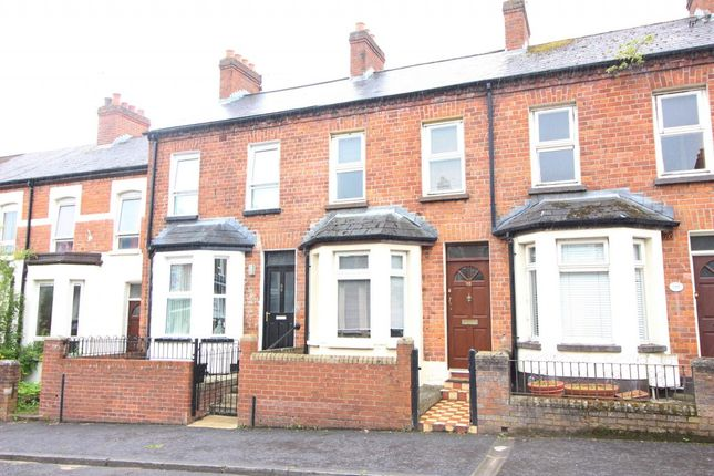 Thumbnail Terraced house to rent in Mountcollyer Avenue, Belfast