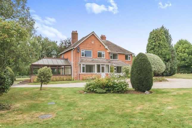 Thumbnail Detached house to rent in Tarrant Gunville, Blandford, Dorset