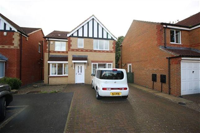 Thumbnail Detached house to rent in Tristram Avenue, Darlington