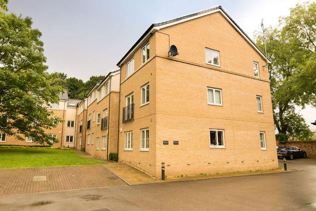 Thumbnail Flat to rent in Oak Tree Lane, Killingbeck, Leeds