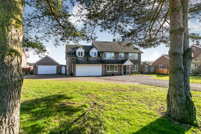 Thumbnail Detached house for sale in Upper Street, Stanstead, Sudbury, Suffolk