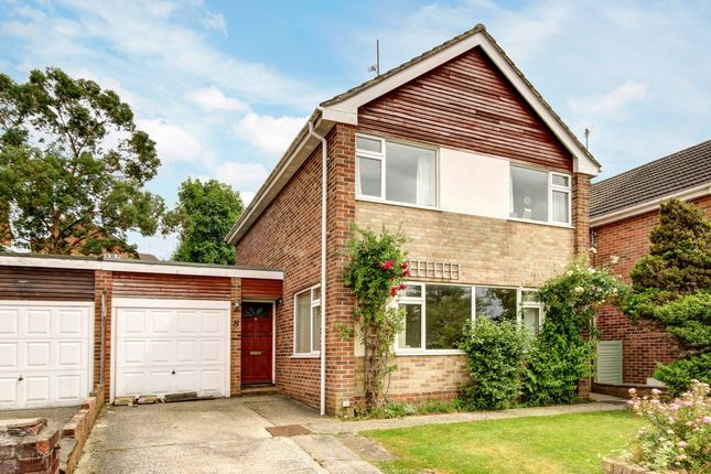Thumbnail Detached house to rent in Sycamore Rise, Newbury