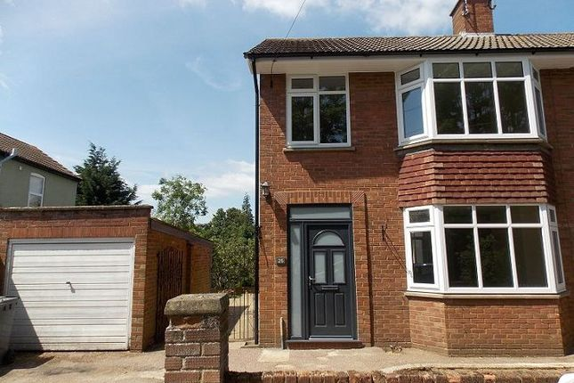 Thumbnail Semi-detached house to rent in Cauldwell Avenue, Ipswich