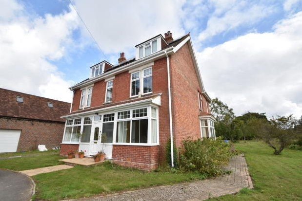 Thumbnail Property to rent in Main Road, Chichester