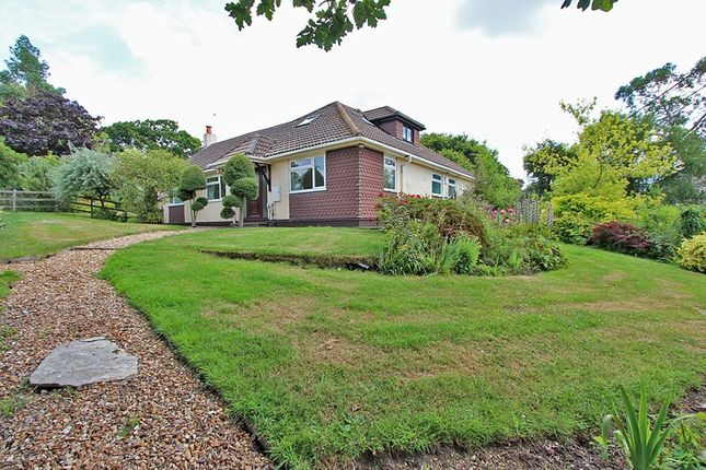 Thumbnail Bungalow for sale in South Sway Lane, Sway, Lymington, Hampshire