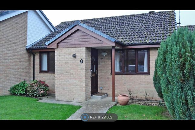 Thumbnail Bungalow to rent in Wyndham Crescent, Cranleigh