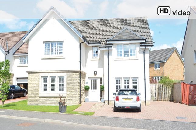 Thumbnail Detached house for sale in Gadwall Grove, Motherwell