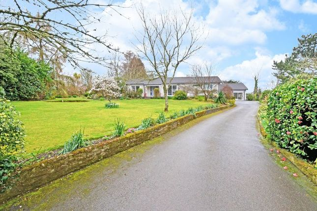 Thumbnail Detached bungalow for sale in Tarrandean Lane, Perranwell Station, Truro