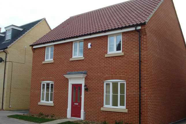 Thumbnail Detached house to rent in Bayberry Close, Red Lodge, Bury St. Edmunds