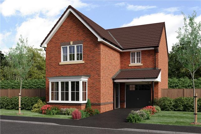 """Thumbnail Detached house for sale in """"Malory"""" at Blackburn"""