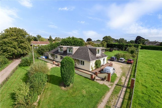 Thumbnail Detached bungalow for sale in Coat, Martock, Somerset