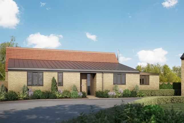 Thumbnail Detached bungalow for sale in Feast Green, Stretham, Ely