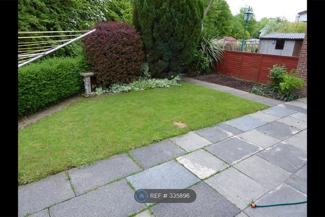 Thumbnail Semi-detached house to rent in Clara Road, Belfast